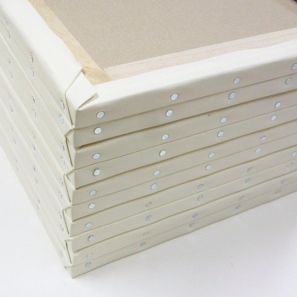 ホワイト 張りキャンバス F15 桐木枠 10枚パック   B00IHCZ23I