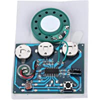 Voice Module,27s 0.5W Recordable Music Sound Voice Module Chip with Speaker, Microphone and Button for DIY Card Gift Box,etc(Key Control)