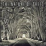 The Nature Of Trees - Photography By Paul Kozal 2018 Mini Calendar (CS0199)