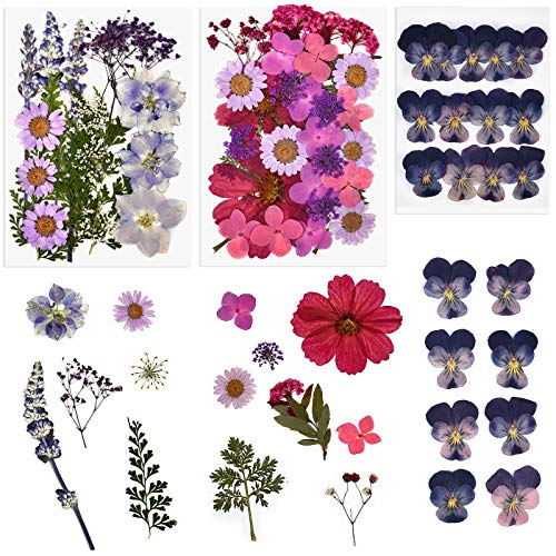 ORMAN Natural Blue Dried Flower Herbs Kit for Bath Soap Making Candle Making and Resin Jewelry Making Art Floral Decors
