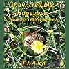 The Incredible Honeybee