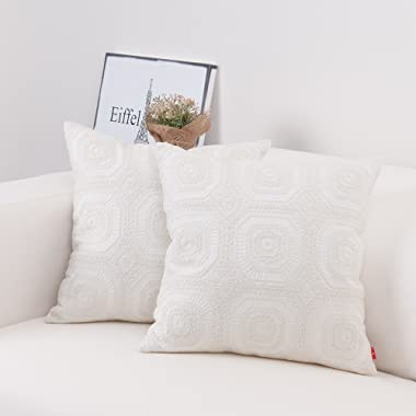 baibu Embroidered Cushion Cover Unique Pattern Designs Throw Pillow Cover Ivory White,1PC