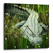3dRose dpp_62370_2 Grow Them Big Here in Florida An Alligator Wall Clock, 13 by 13-Inch
