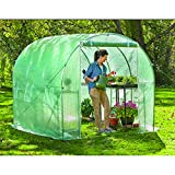 Cheap CASTLECREEK Arch Walk-In Greenhouse
