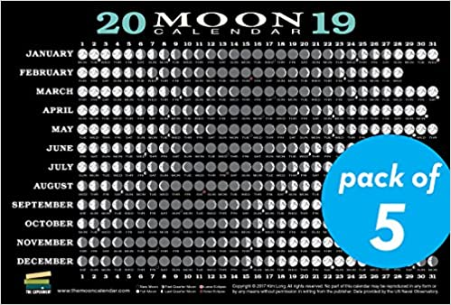 Moon Phases 2019 Calendar 2019 Moon Calendar Card (5 pack): Lunar Phases, Eclipses, and More
