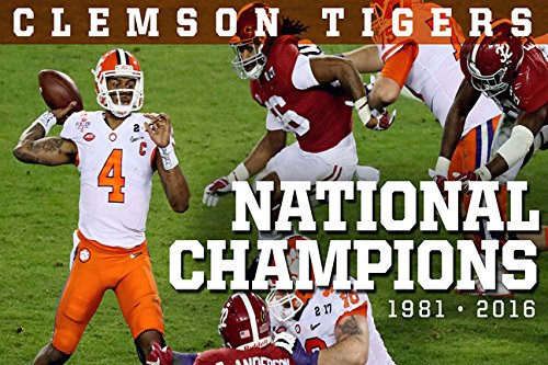 Clemson Tigers National Champions (Tigers Framed Picture)