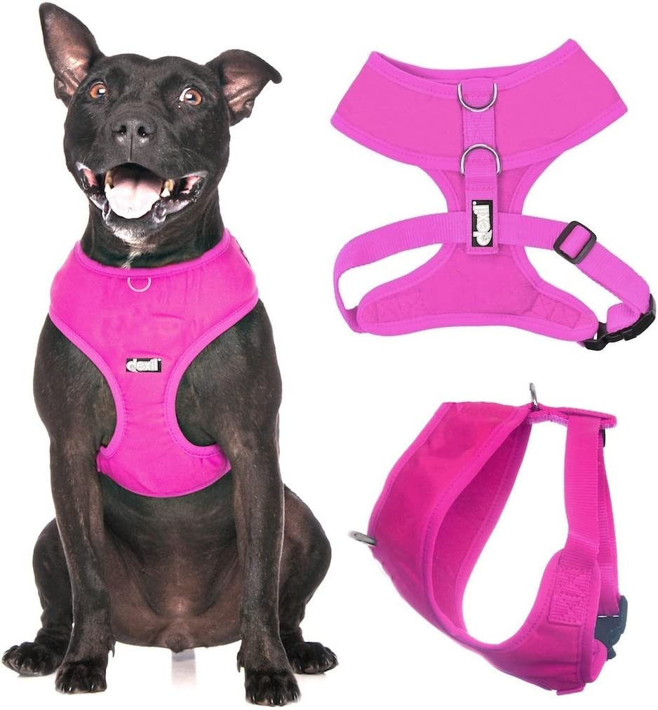 Dexil Elite Range Padded Waterproof Adjustable Back and Front Ring Non-Pull Small Pet Dog Vest Harness Candy Pink, Small 36-58cm Chest