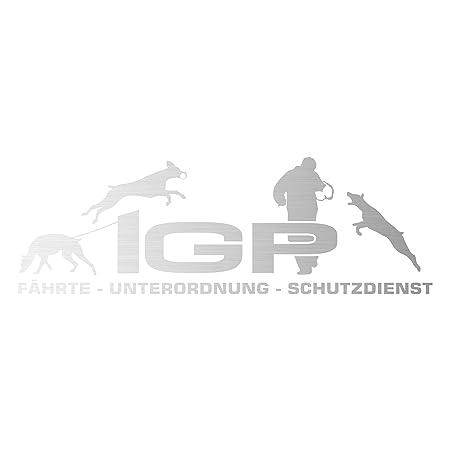 Siviwonder Auto Aufkleber Igp Dobermann Kupiert Dobi Autoaufkleber K9 Hundeanhänger Ehemals Ipo Hundesport Hundemotiv Rot