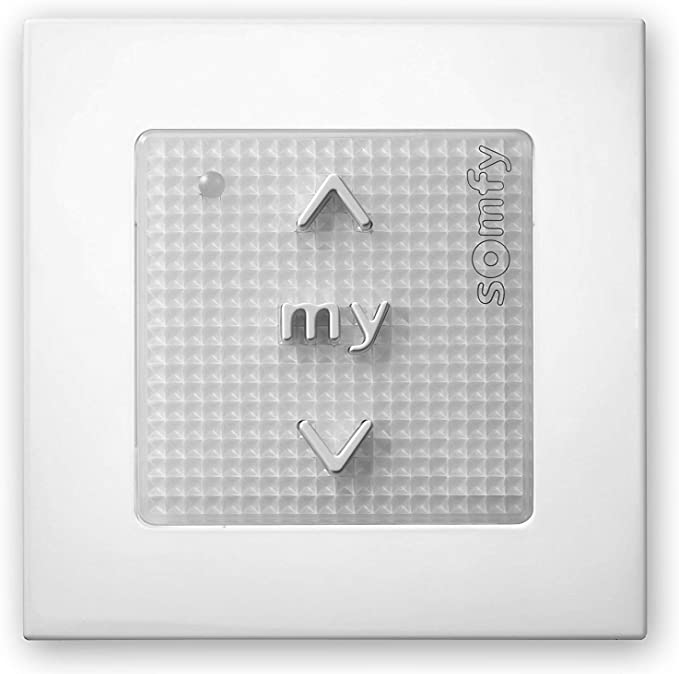 Somfy 3660849503710 Smoove RS100#1811317 IO Silver Shine Sender//T/él/écommande pour programmes dinterrupteurs dinstallation