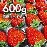 農家直売どっとこむ 信州ごちイチゴ(R) 600g(2パック)