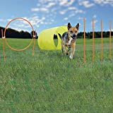 Dog Agility Set - Kyjen Outward Hound 9 Piece Outdoor Agility Starter Kit - Quality Agility Equipment for Dogs and Puppies