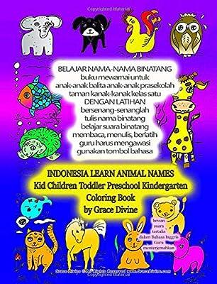 60 Gambar Binatang Untuk Mewarnai HD
