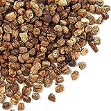 Spice Jungle Decorticated Cardamom - 10 lb. Bulk
