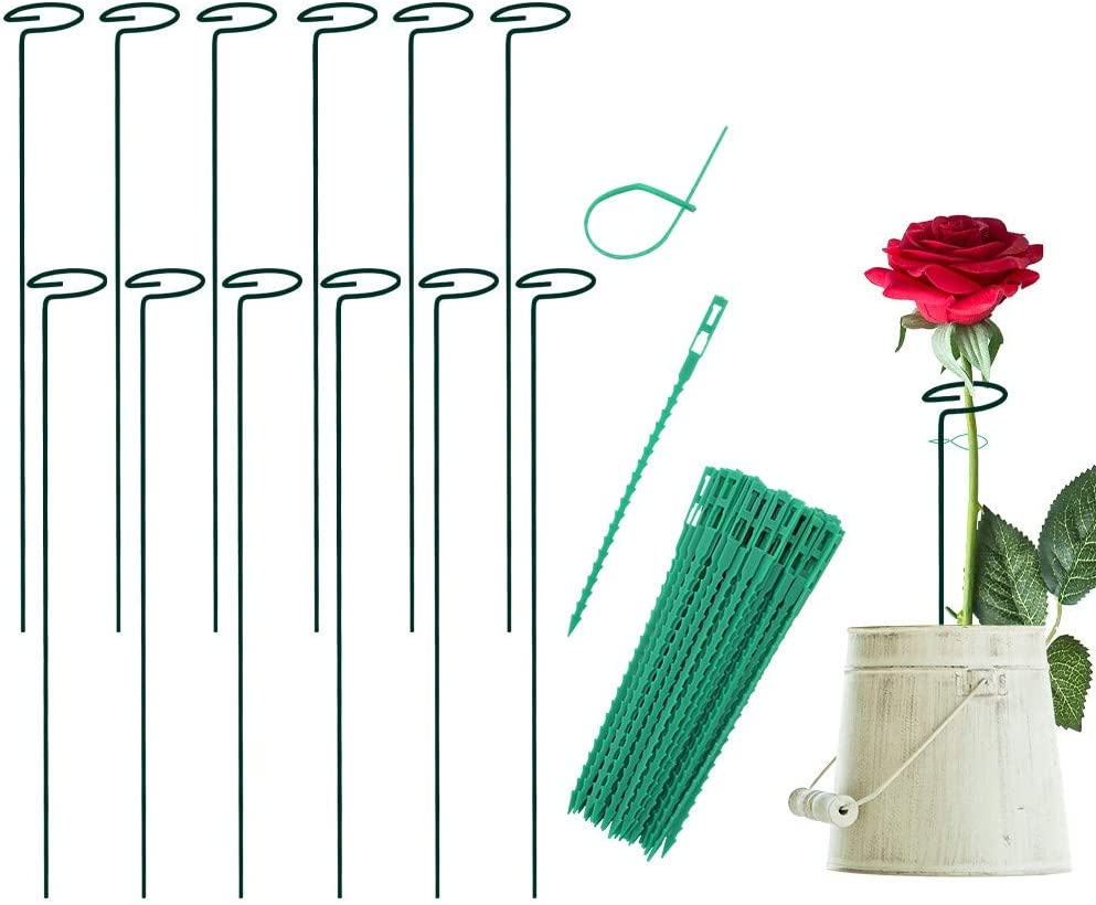 FEED GARDEN 12 Pack 15.8 INCH Plant Support Stakes for Flowers,Garden Single Stem Plant Support for Amaryllis Tomatoes Orchid Lily Peony Rose Flower Stem with 50 pcs Plant Twist Ties