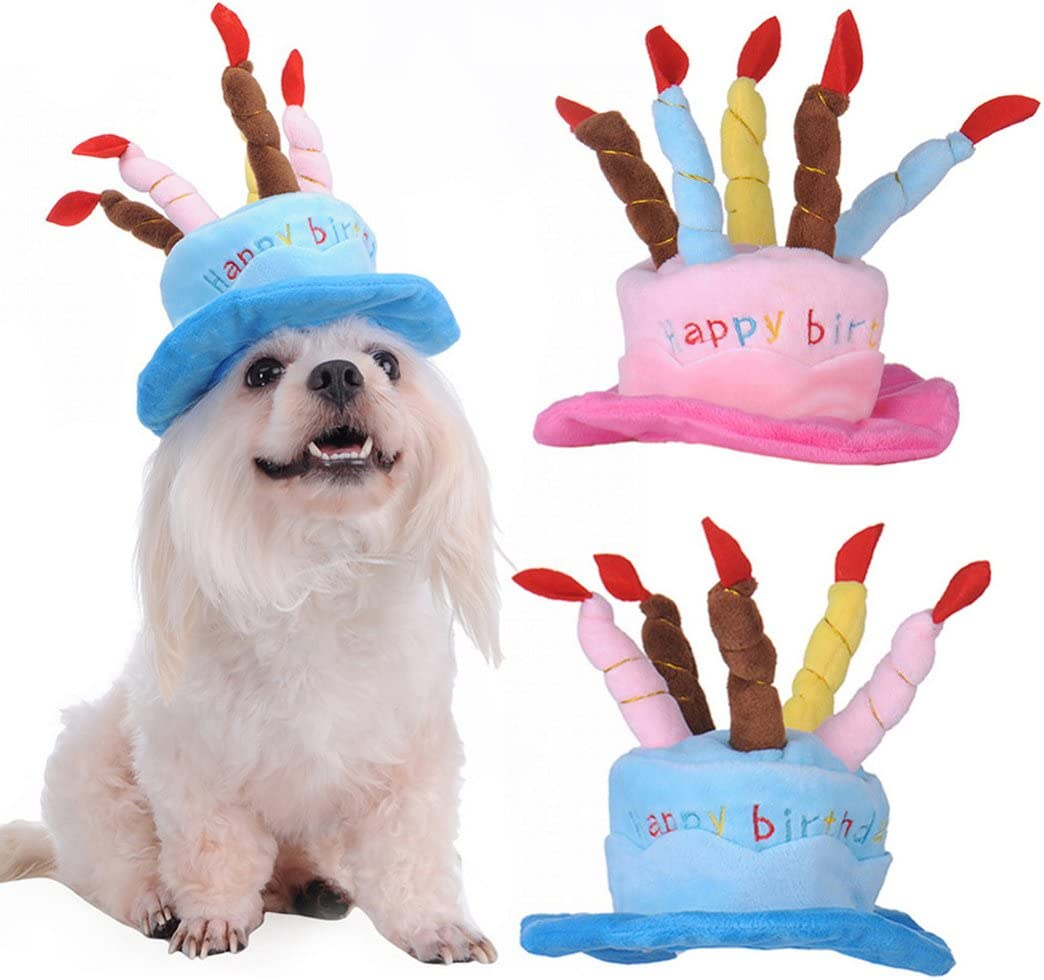 Amazon.com: Perro gorro de fiesta, legendog perro sombrero ...