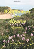 Wildflowers in the Algarve: An Introductory Guide