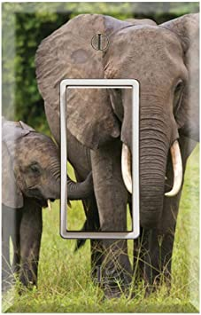 Graphics Wallplates African Elephants Baby Calf Single Rocker Gfci Wall Plate Cover Amazon Com