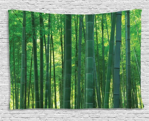 Fun Party Theme Ideas For Adults (Bamboo House Decor Tapestry Ambesonne, Asian Oriental Exotic Bamboo Trees in the Rainforest Horizontal Jungle Stalk Nature View, Wall Hanging for Bedroom Living Room Dorm, 60 W X 40 L Inches, Green)