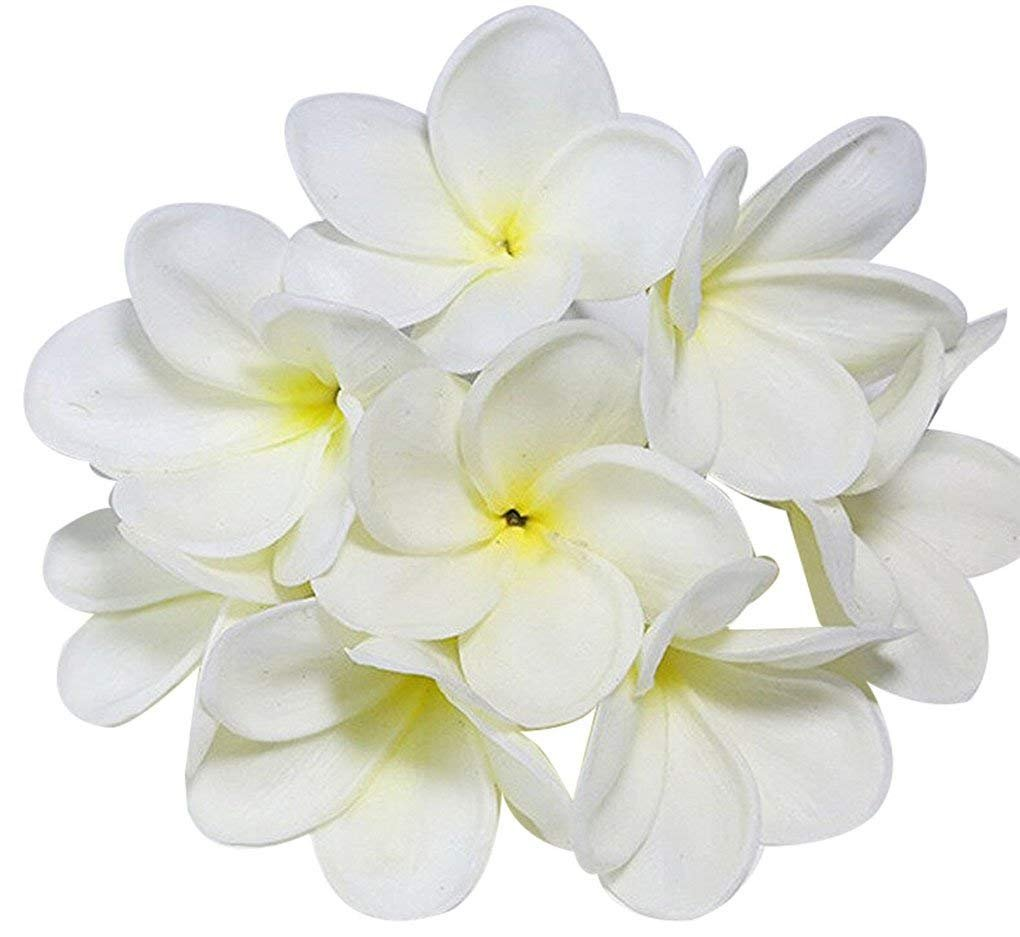 Amazon Bunch Of 10 Pu Real Touch Lifelike Artificial Plumeria
