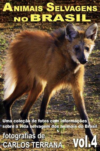 Portugueses No Brasil Costumes (ANIMAIS SELVAGENS NO BRASIL - uma coleção de fotografias com informações sobre a vida e costumes dos animais do Brasil - VOL.4 (Portuguese Edition))