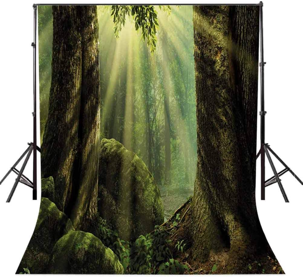 Nature 10x12 FT Photography Backdrop Deep Down in Forest with Sunbeams Reflections on Moss Tree Bodies Scenery Background for Photography Kids Adult Photo Booth Video Shoot Vinyl Studio Props