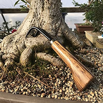 Two Prong Bonsai Root Pick Rake Hardened Carbon Steel Ergonomic Wooden Handle Japanese Import Safely Separate Roots For Repotting Great For Larger Bonsai : Bonsai Tools : Garden & Outdoor