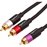 AmazonBasics 1/2-Male to 2-Male RCA Audio interconnects - 4 feet, 1-Male to 2-Male