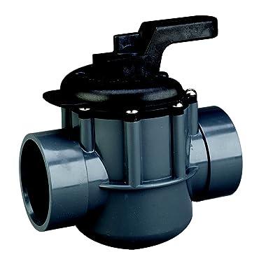 Pentair 263029 Grey/Black Diverter Valve 2-Way 2-Inch (2-1/2-Inch Slip Outside), PVC, Grey/Black : Swimming Pool Filter Valves : Garden & Outdoor