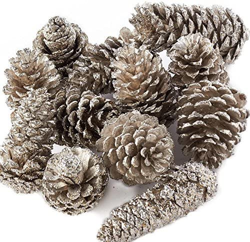 Factory Direct Craft Decorative Platinum Glittered Coated Natural Pinecones 12 Pinecones