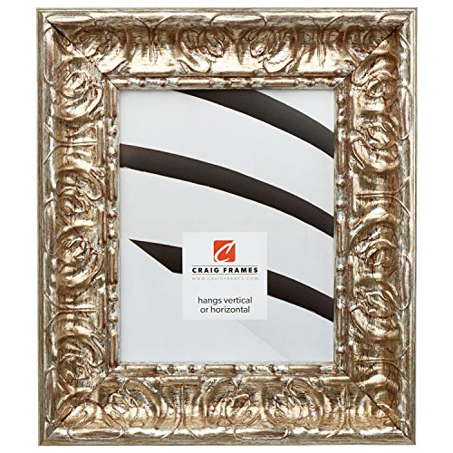 Craig Frames Arqadia Vintage, Rustic Silver Picture Frame, 8 by 10-Inch