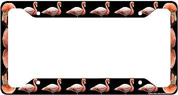 Flamingos Any Name  Auto Car Tag Novelty License Plate