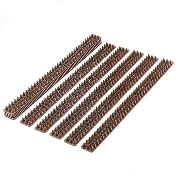 PestExpel® - Juego de pinchos antiescalada para pared de pájaros y gatos, 4, 5 - 13, 5 metros, color marrón: Amazon.es: Jardín