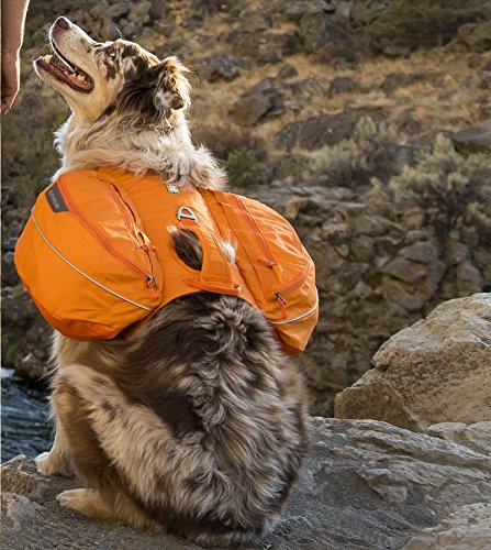 RUFFWEAR 2017 APPROACH DOG PET BACKPACK ♦ ADJUSTABLE EVERYDAY HIKING CAMPING PACK ♦ ALL SIZES AND COLORS (Large / XL, Orange Poppy) by Ruffwear