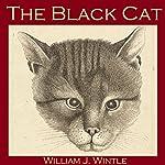 The Black Cat | William James Wintle