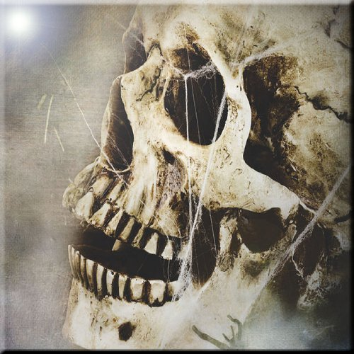 Rikki Knight Skull in Stones Design Ceramic Art Tile 6 x 6
