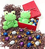 Red Shimmer Easter Gift Basket Box - Godiva Milk, White & Dark Gourmet Chocolate Truffles Candy & Plush Frog
