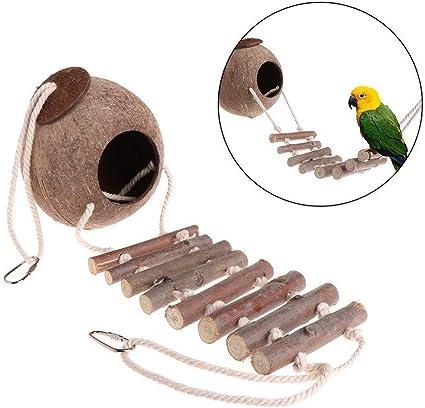 GUALA Cáscara de Coco Natural Nido de Pájaro Nido cría del Animal doméstico del Loro Hideaway Casa con Escalera de Cuerda para Periquito,B: Amazon.es: Hogar