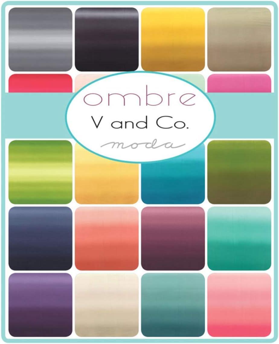 para telas de moda Ombre New Colors 2019 Junior Jelly Roll 20 tiras de 2.5 pulgadas por V and Co