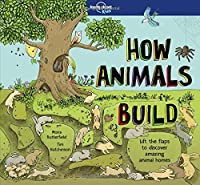 How Animals Build (Lonely Planet Kids) [Idioma