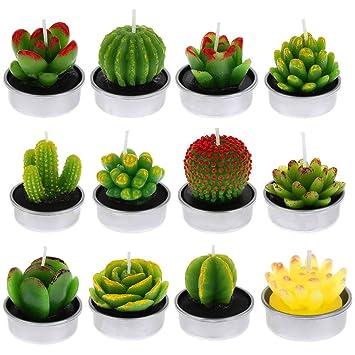 Fantesi 12 Pieces Cactus Bougies Succulentes A La Main Bougies Pour Spa Accueil Fete De Mariage Decoration Cadeaux