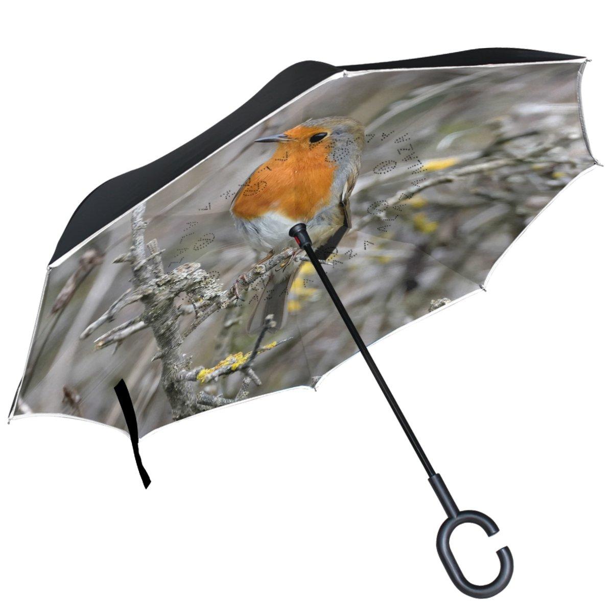 ALAZA Robin pájaro en Rama Realtree Paraguas invertido Doble Capa Resistente al Viento Reverse Paraguas: Amazon.es: Deportes y aire libre