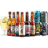 Beer Hawk Craft Beer Mixed Case Gift Set – 10 Beer Selection Inc Pale Ale, IPA & Pilsner