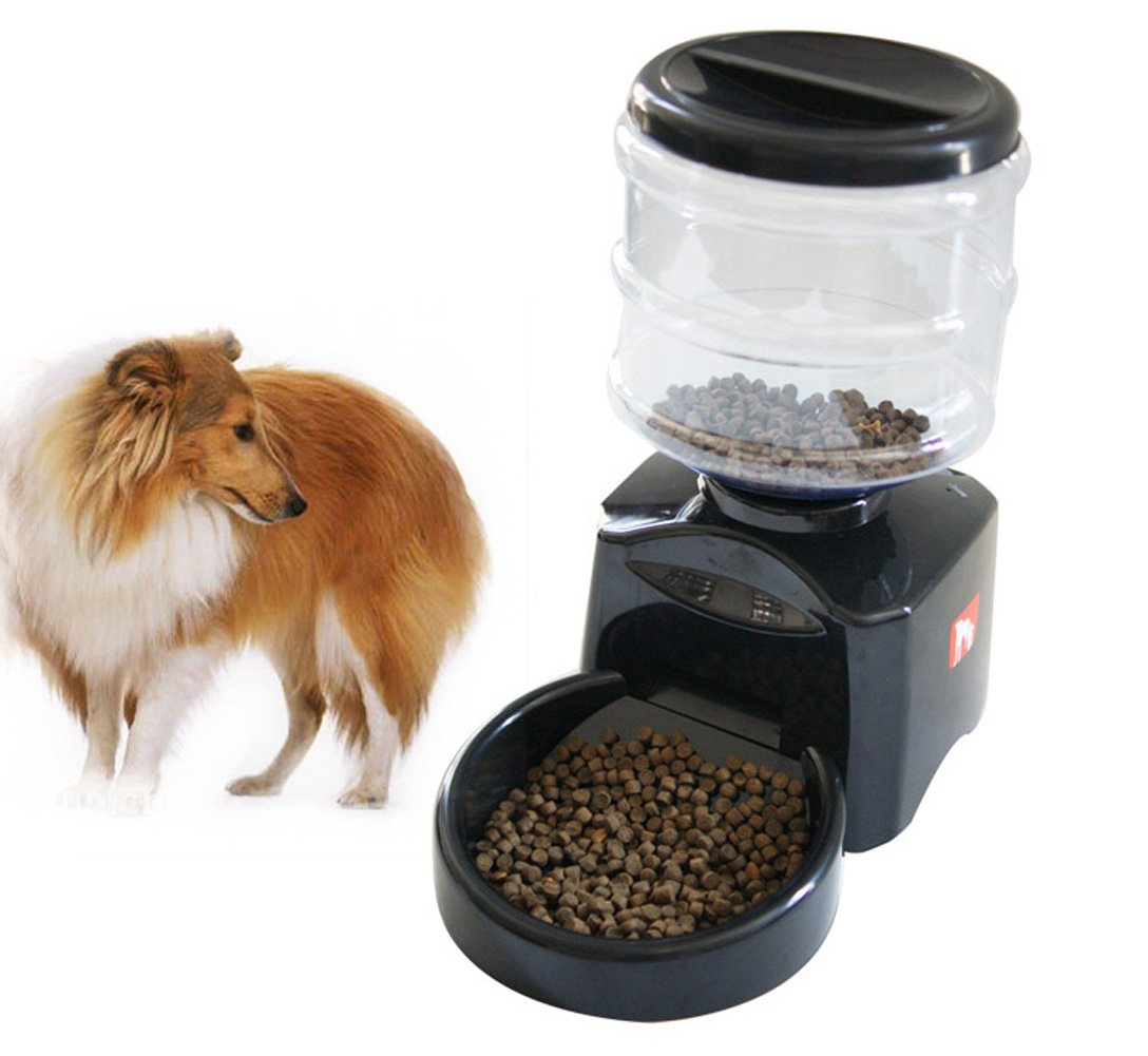 HGD® Electronic Portion Control Programmable Automatic Cat Dog Pet Feeder 5.5 Liter Capacity Dispense 3 Meals Per Day