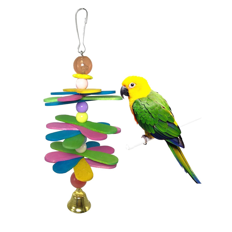 converse pappagalli
