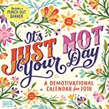 It's Just Not Your Day Wall Calendar 2018
