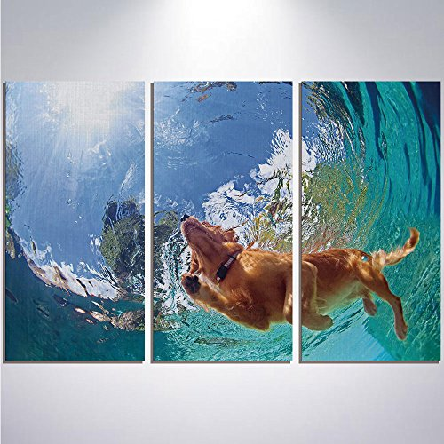 Golden Retriever Puppy Framed - 3 Pieces Modern Painting Canvas Prints Wall Art For Home Decoration Funny Print On Canvas Giclee Artwork For Wall DecorUnderwater Photo of Golden Labrador Retriever Puppy Swimming in Pool Happy Decora