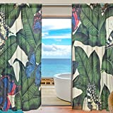 SEULIFE Window Sheer Curtain, Tropical Leaves Animal Butterfly Voile Curtain Drapes for Door Kitchen Living Room Bedroom 55x78 inches 2 Panels