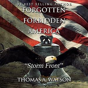 Storm Front Audiobook