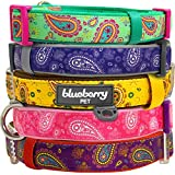 """Blueberry Pet Summer Collars for Dogs 3/4"""" M Paisley Flower Print Inspired Ultimate Violet Adjustable Basic Neoprene Padded Dog Collar, Matching Leash & Harness Available Separately"""