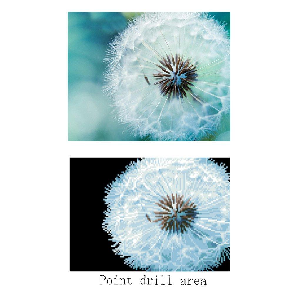 DIY 5D Diamond Painting E 30x 40cm YUYOUG Fleur Photos de Broderie de Strass en Cristal Arts Craft pour Le D/écor de Mur /à la Maison